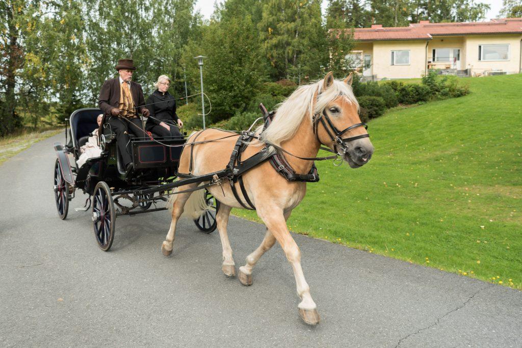 vihkipari saapuu hevosella